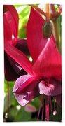 Fuchsia Named Roesse Blacky Beach Towel