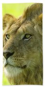 Golden Boy Beach Towel