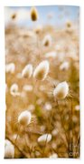 Golden Field Beach Towel