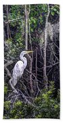 Heron Colors Beach Towel