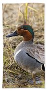 Greenwing Teal Beach Towel