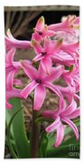 Hyacinth Named Pink Pearl Beach Towel