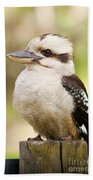 Kookaburra Beach Towel
