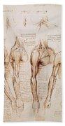 Leonardo: Anatomy, C1510 Beach Towel