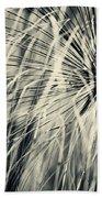 Papyrus Beach Towel