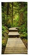 Path In Temperate Rainforest Beach Towel