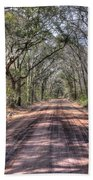 Road To Angel Oak Beach Towel