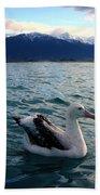 Wandering Albatross Beach Towel