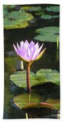 Pond Of Water Lily Beach Towel