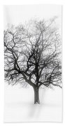 Winter Tree In Fog Beach Towel