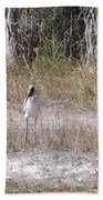 Wood Storks Beach Towel
