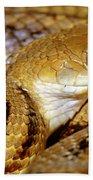 Yellow Rat Snake Beach Towel