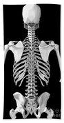 Bones Of The Upper Body Beach Towel
