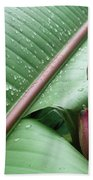 Banana Leaf Beach Towel