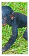 Bonobo Baby Beach Towel
