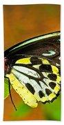 Cairns Birdwing Butterfly Beach Towel
