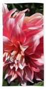 Dahlia Named Myrtle's Brandy Beach Towel
