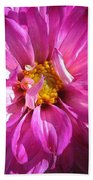 Dahlia Named Pink Bells Beach Towel
