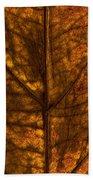Dogwood Leaf Backlit Beach Towel