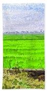 Green Fields With Birds Beach Towel