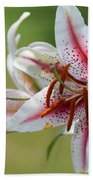 Oriental Lily Named Tiger Edition Beach Towel
