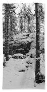 Pine Forest Winter Beach Sheet