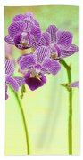 Purple Orchid-8 Beach Towel