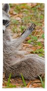 Raccoon Beach Towel