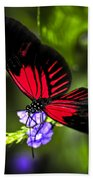 Red Heliconius Dora Butterfly Beach Towel