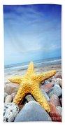 Starfish Beach Sheet