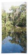 Swamp Reflection Beach Towel