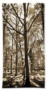 The Forest Beach Towel