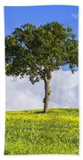 Tuscany - Val D'orcia Beach Towel