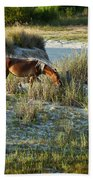 Wild Spanish Mustang Beach Towel