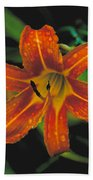 Day Lilly Beach Towel