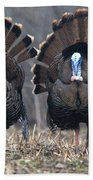 Jake Eastern Wild Turkeys Beach Towel