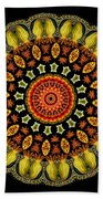 Kaleidoscope Ernst Haeckl Sea Life Series Beach Towel