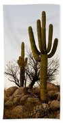 Saguaro Cacti Beach Towel