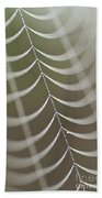 Spider Web With Dew Drops  Beach Towel