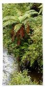 Tropical Forest Beach Towel