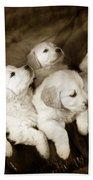 Vintage Festive Puppies Beach Towel by Angel  Tarantella