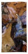Colors Of The Fall Beach Towel
