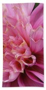 Dahlia Named Siemen Doorenbosch Beach Towel