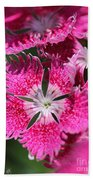 Dianthus Cross Beach Towel