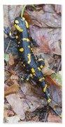 Fire Salamander Beach Towel