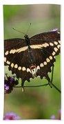 Giant Swallowtail Butterfly Beach Sheet