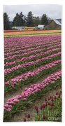 Tulip Field Beach Towel
