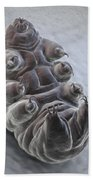 Water Bear Tardigrades Beach Sheet