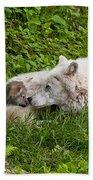 Arctic Wolf Pup Beach Towel