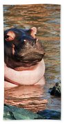 Hippopotamus In River. Serengeti. Tanzania Beach Towel